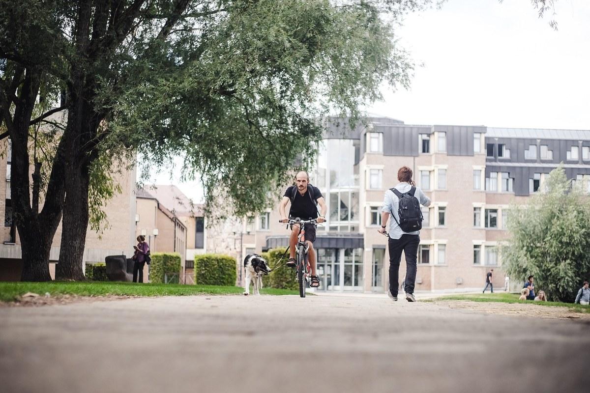 Se promener à vélo ou à pied