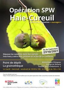 Opération Haie-Cureuil: collectez les noisettes sauvages