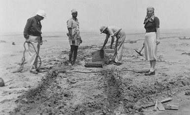 Parcours d'archéologues : entre archives et objets