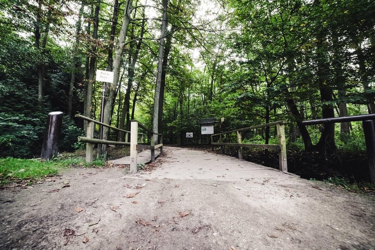 Bois des Rêves - promenade