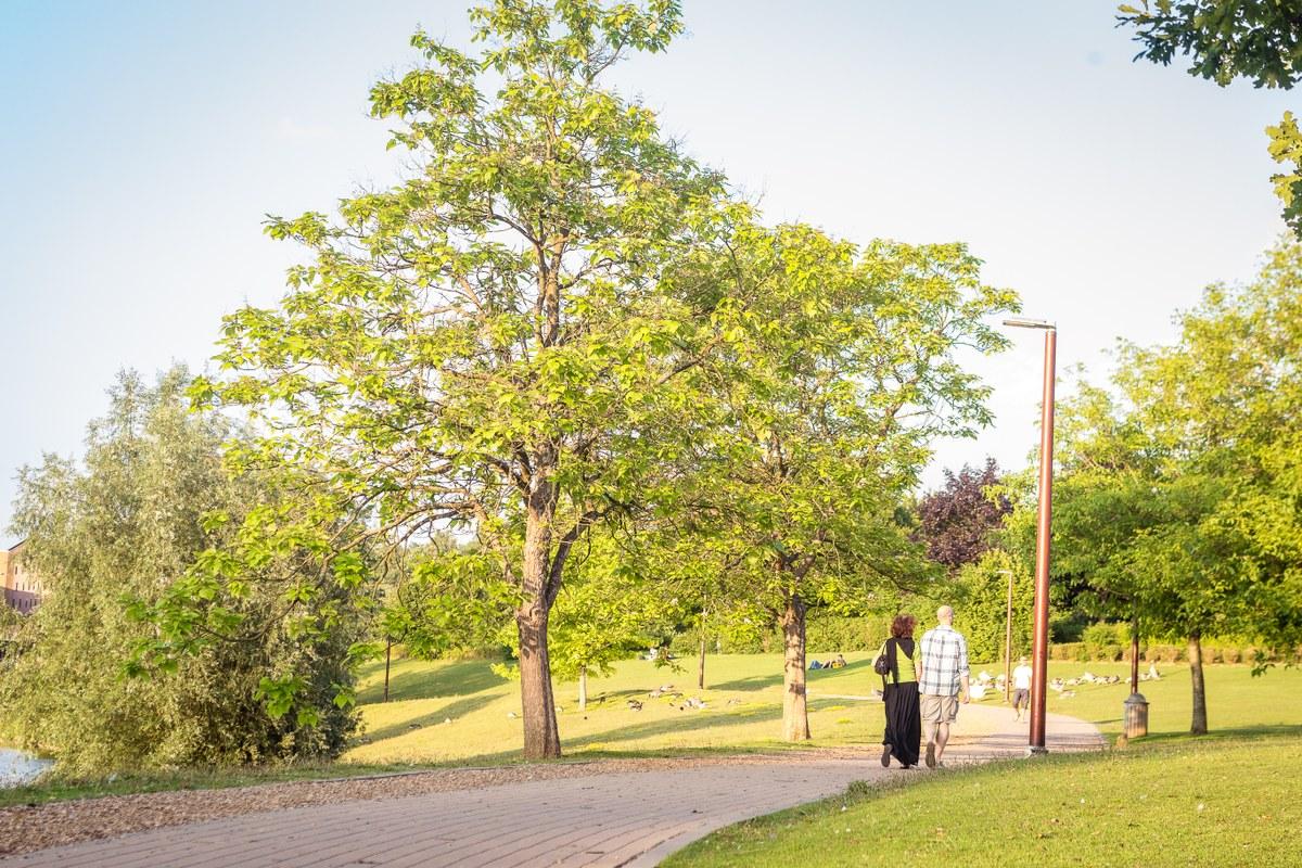 Rêverie promeneur solitaire