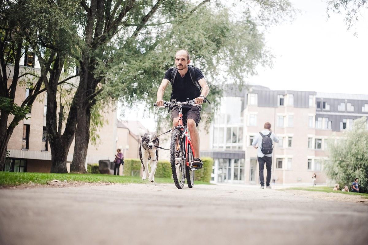 Cycliste à LLN